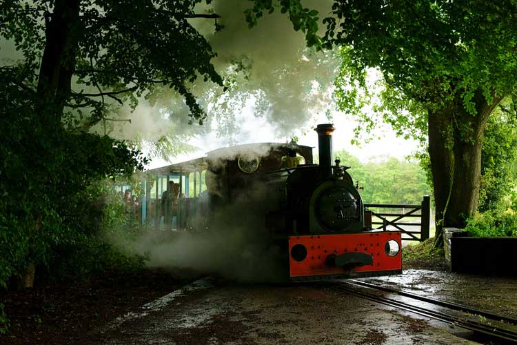 Hollycombe Steam Collection. © Copyright Peter Trimming and licensed for reuse under CC BY-SA 2.0