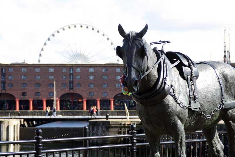 Albert Dock, Liverpool 11 © GooseyGoo