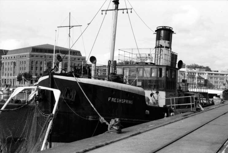 SS Freshspring