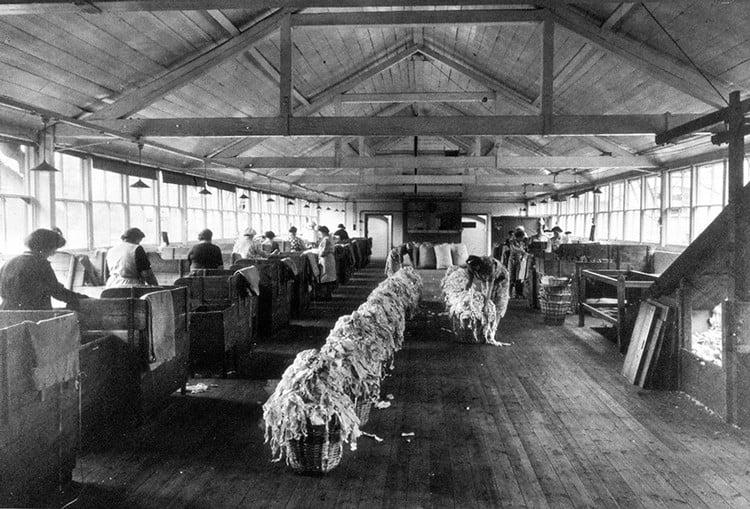 Rag Room of Springfield Mill